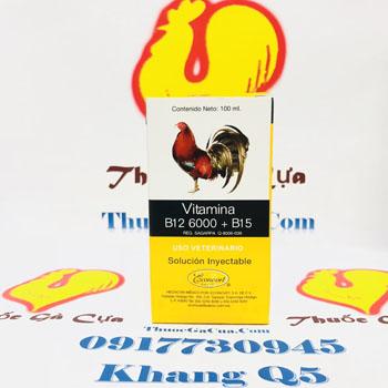 Vitamina B12 6000+B15